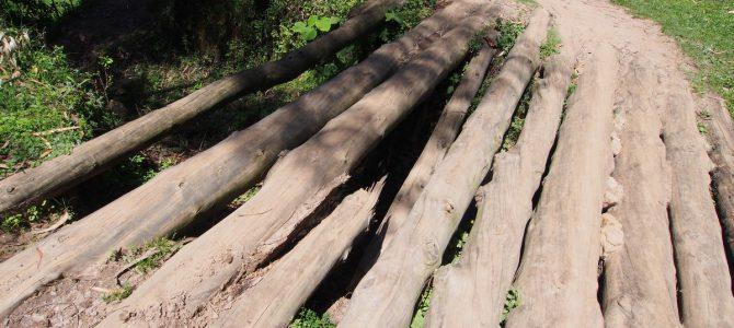 Dag 171-175 (13-17 feb.): Avonturen in Rwanda