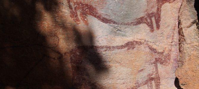 Dag 246-250 (29 apr-3 mei): Het staartje van Mudumu NP en de rotstekeningen van Tsodilo Hills in Botswana