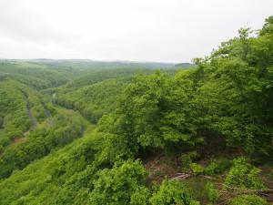 Leuk uitzicht vanaf Achterhöhe