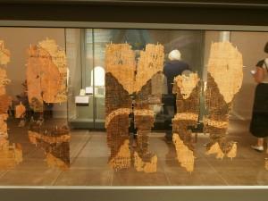 P9069359 Mijnpapyrus van Turijn