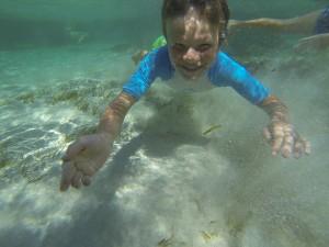 GOPR7508 - Tiwi beach