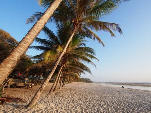 PC238417 - Tiwi beach