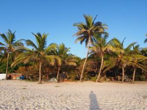 PC238421 - Tiwi beach