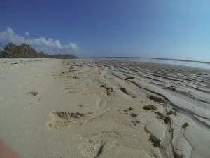 GOPR7653 - Tiwi beach