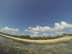 GOPR7663 - Tiwi beach