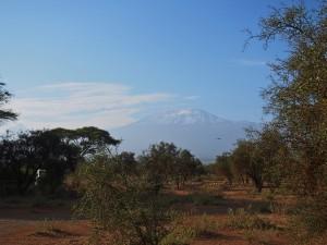 PC298659 - Mount Kilimanjaro