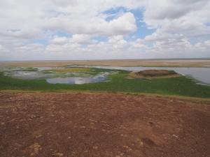 PC299043 - Amboseli NP