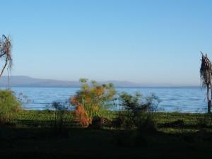 P1039251 - Naivasha meer