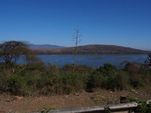 P1049441 - Naivasha meer