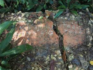 P1069550 - Overwoekerde wegwijzer na bevrijding Kakamega Forest NR