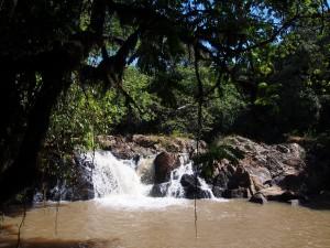P1069604 - Isiukhu waterval Kakamega Forest NR