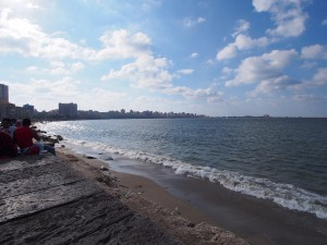 P9291850 - Baai van Alexandrië
