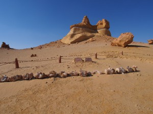 PA173782 - Wadi el-Hettan