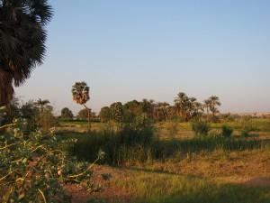 PA244363 - Straatbeeld Aswan