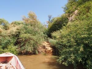 PA294599 - Aanleg'steiger' voor Armant West