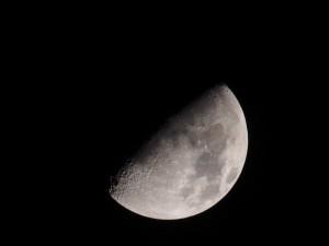 PB085384 - Maan in Sudan