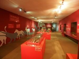 PB257031 - National Museum