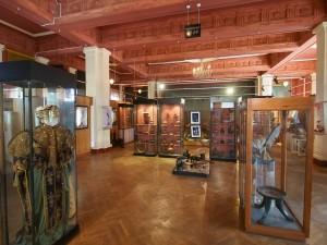 PB257094 - Etnografisch Museum