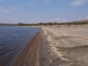 PB267206 - Shalla meer Abiata Shalla NP