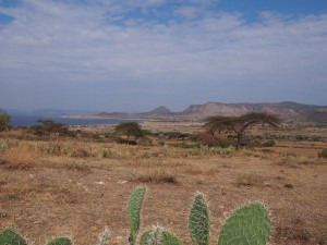 PB277332 - Uitzicht vanaf 10000 Flamingos Lodge