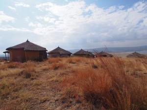 PB277335 - 10000 Flamingos Lodge