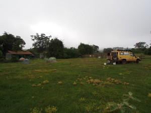 PB297537 - Rira Campsite Bale Mountains NP