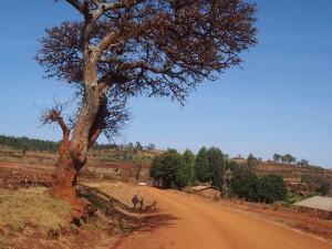P1099704 - Eerste indrukken Uganda
