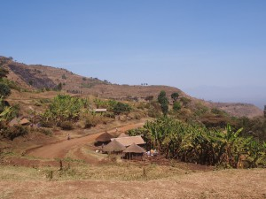 P1099732 - Eerste indrukken Uganda