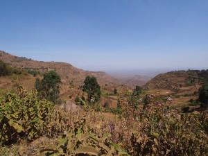 P1099735 - Eerste indrukken Uganda