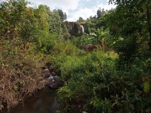 P1210739 - Tweede waterval Sipi Falls