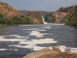 P1271548 - Waterval Murchison Falls NP