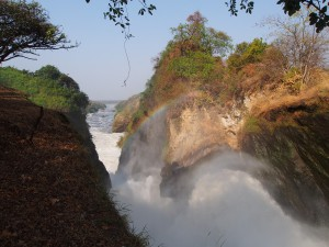 P1281630 - Waterval Murchison Falls NP