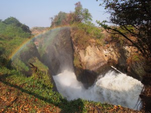 P1281639 - Waterval Murchison Falls NP