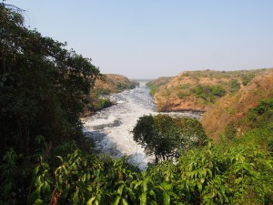 P1281643 - Waterval Murchison Falls NP