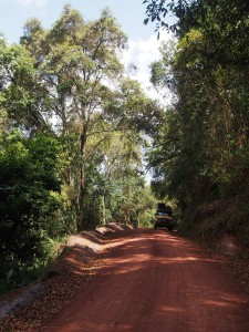 P2082236 - Bwindi NP, onderweg naar Kabale