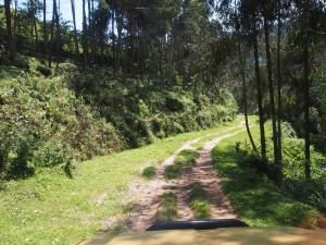 P2132411 - Onderweg naar Kibuye