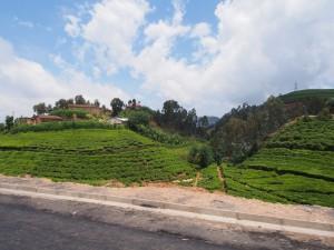 P2132447 - Onderweg naar Kibuye