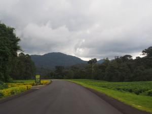 P2142488 - Onderweg naar Butare