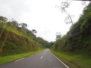P2142492 - Rijden door Nyungwe Forest NP