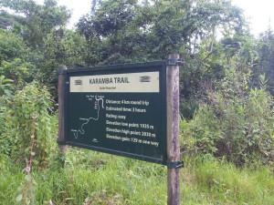 P2142494 - Wandelpaden door Nyungwe Forest NP