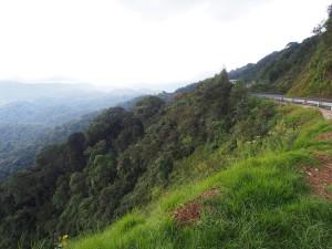 P2142542 - Uitzicht Nyungwe Forest NP