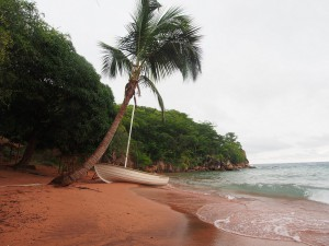 P2202866 - Strandje bij Jakobsen Beach