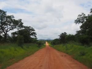 P2243098 - Onderweg naar Sumbawanga