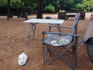 P2253145 - Liembe de huiskat Liembe Beach Camp