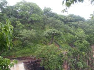 P2263170 - Zambiaanse zijde Kalambo Falls