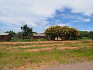 P2263202 - Onderweg naar Sumbawanga