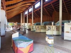 P3023517 - Karonga Museum