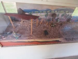 P3023527 - Karonga Museum