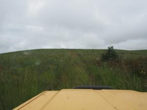 P3084236 - Ook dit is toch echt een pad, Nyika NP