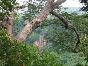 P3063912 - Manchewe Falls vanaf Lukwe Lodge